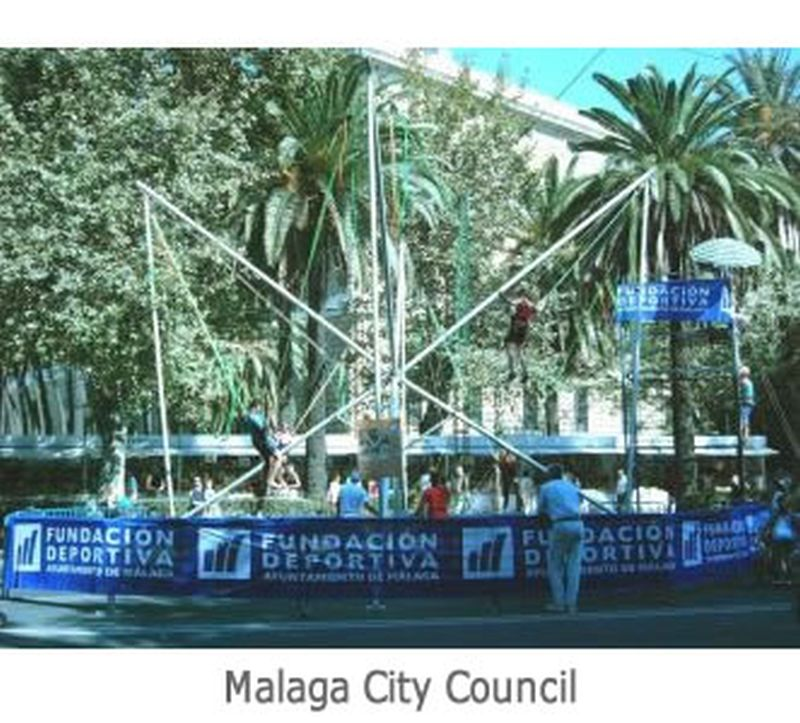 Malaga City Council